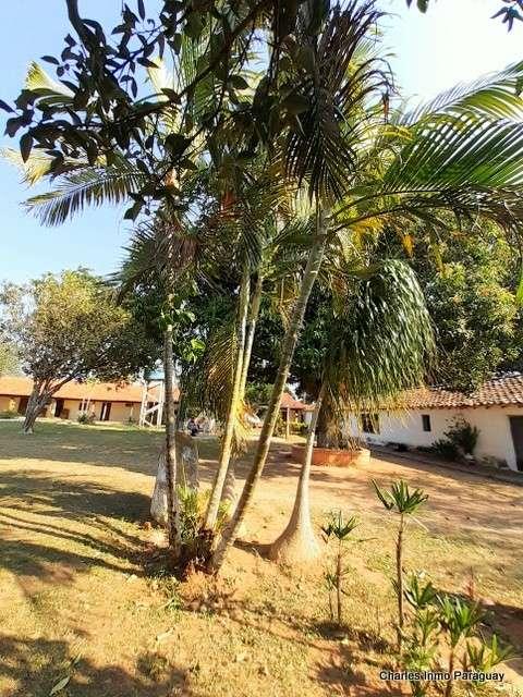 Estancia de 330 hectáreas en Quiindy - 6