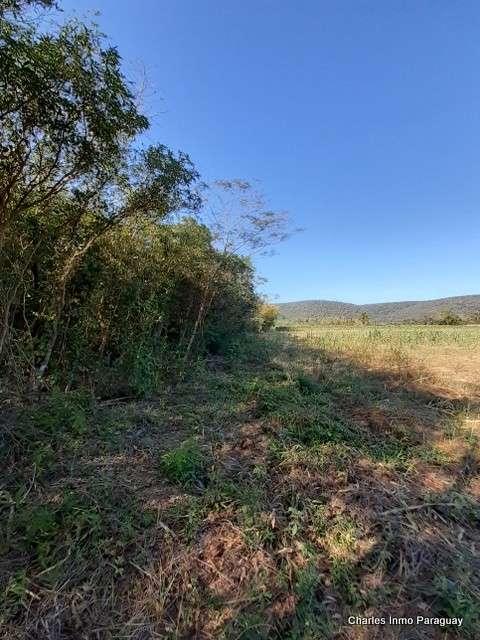 Terreno de 6 hectáreas en La Colmena Tebicuary - 2
