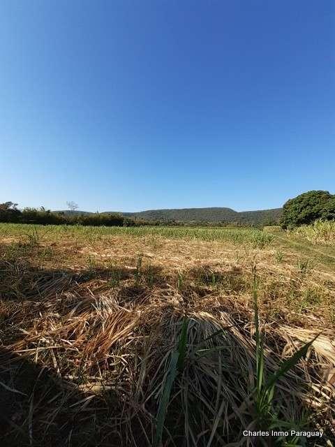 Terreno de 6 hectáreas en La Colmena Tebicuary - 3