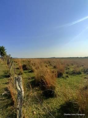 Terreno 25 hectáreas con casa y arroyo en en La Colmena