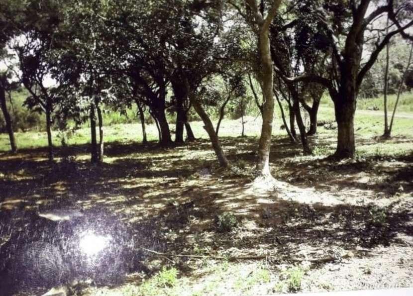 3 terrenos juntos en urbanización el cortijo San Bernardino - 0