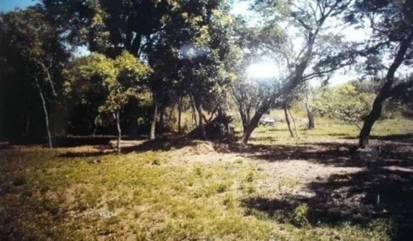 3 terrenos juntos en urbanización el cortijo San Bernardino - 2