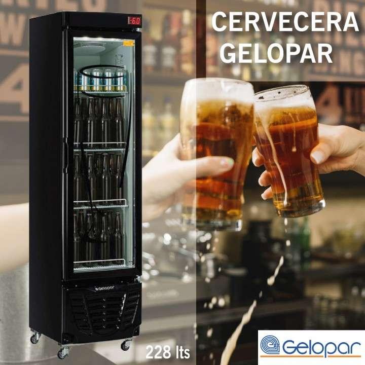 Cervecera Gelopar GRBA-230EVGW 228L - 0