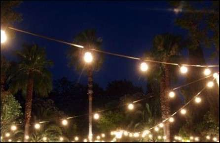 33 luces tipo guirnaldas - 3
