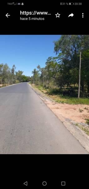 5 hectáreas 2200 m2 en Eusebio Ayala