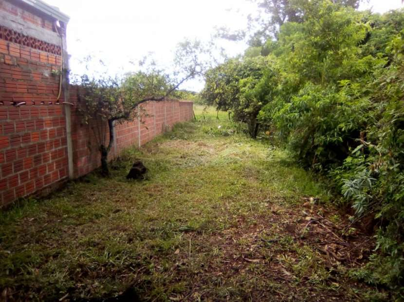 Terreno 4200 m2 sobre asfalto en San Juan del Paraná - 2
