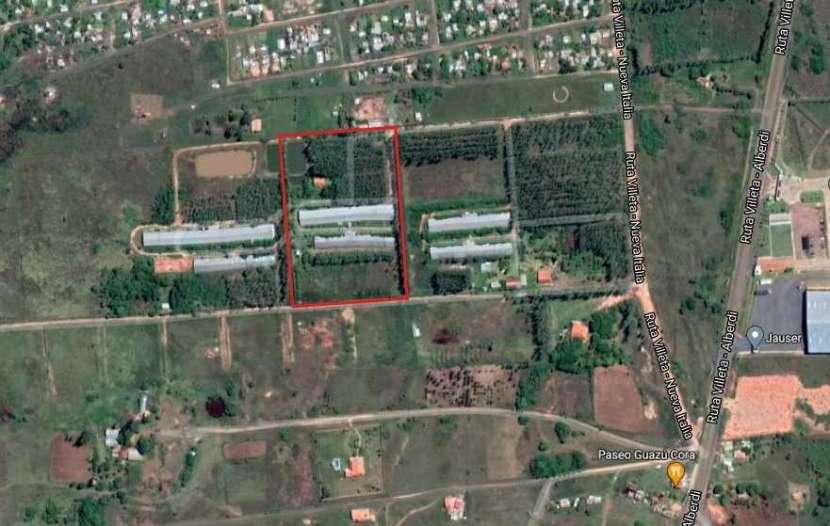 Terreno 3 hectáreas con 2 galpones de crianza - 0