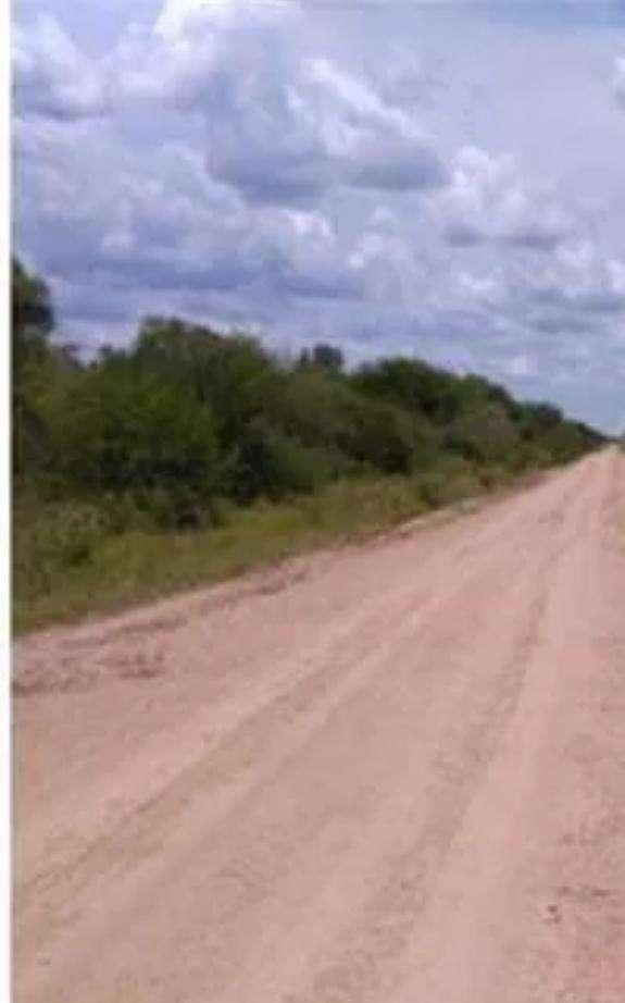 118.000 hectáreas en Boquerón Chaco Paraguayo - 0