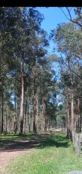 Terreno de 10.000 hectáreas