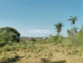 Campo en el Chaco Paraguayo