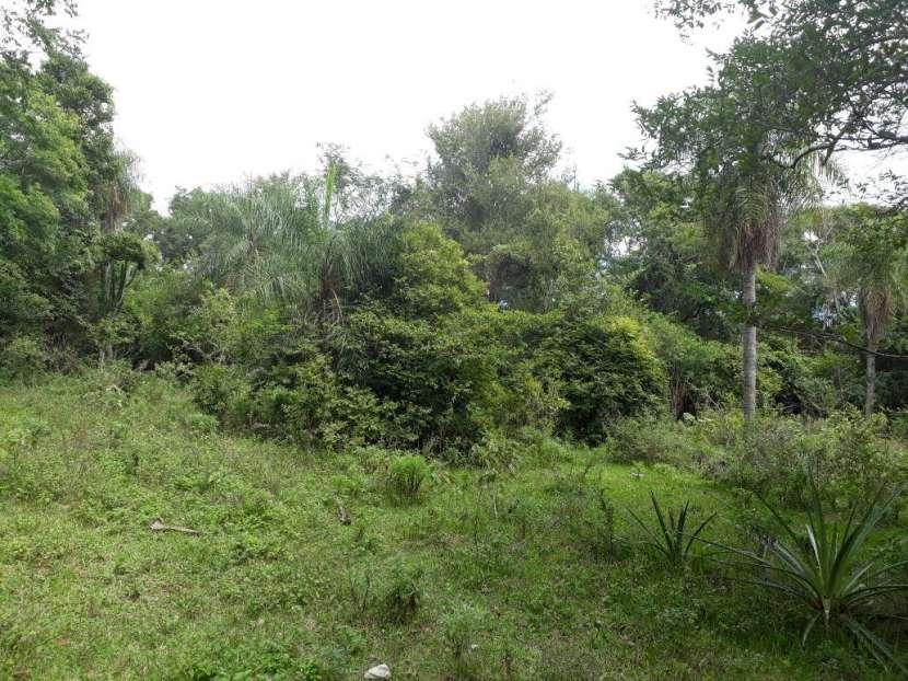 Terreno de 118.000 hectáreas en el Chaco - 1