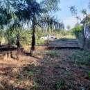 2 terrenos juntos en Capiatá Km 24 Aldana Cañada - 0
