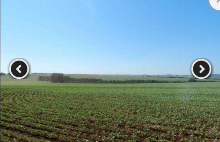 Campo 6300 hectáreas - 1