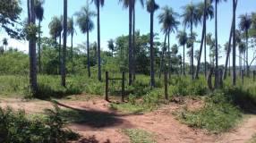 9 hectáreas zona Capilla Cué