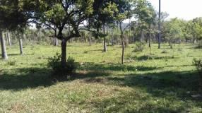 9 hectáreas en Piribebuy