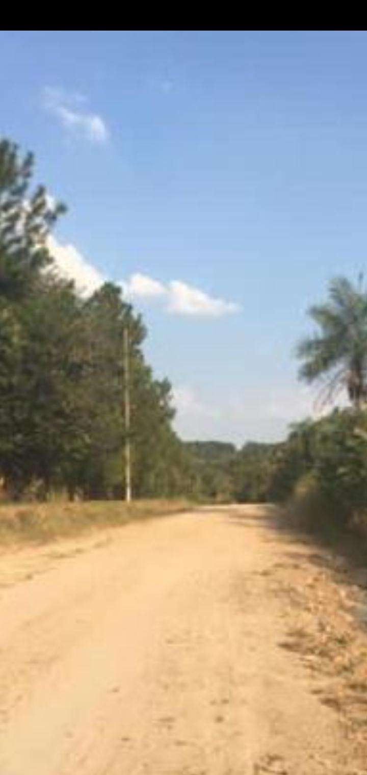 Terreno de 4 hectáreas - 7