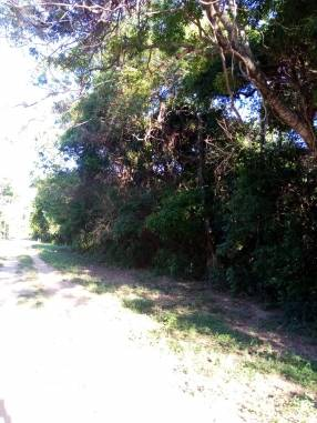 5 hectáreas en Ypacaraí