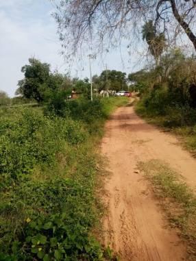 Terreno de 15 hectáreas