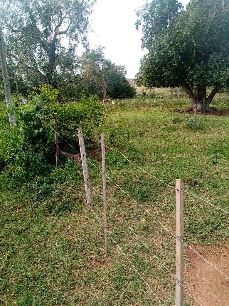 Terreno de 15 hectáreas - 4