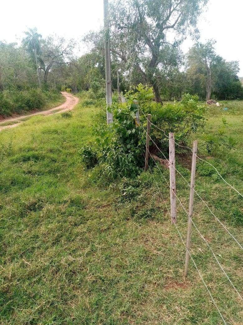 Terreno de 15 hectáreas - 6