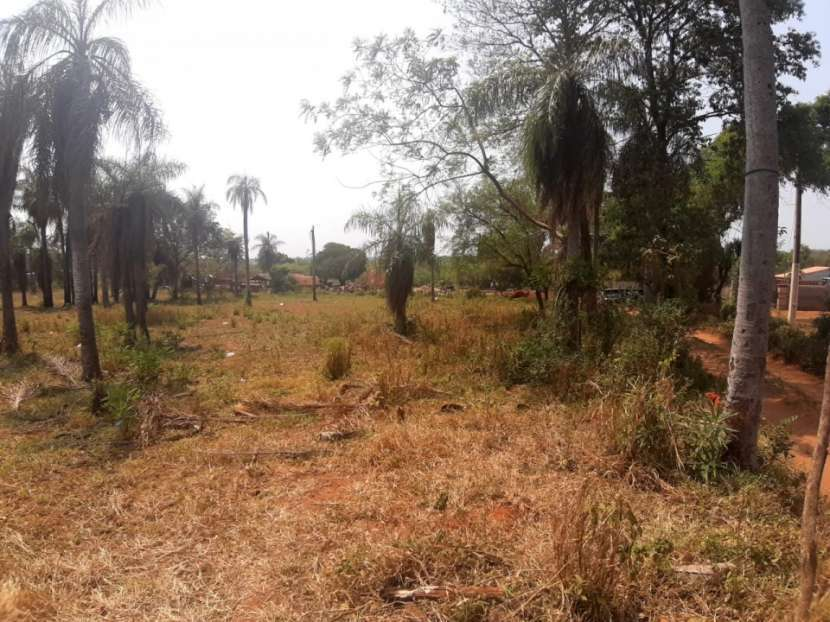 Terreno de 2 hectáreas en Toledo Cañada Capiatá - 1