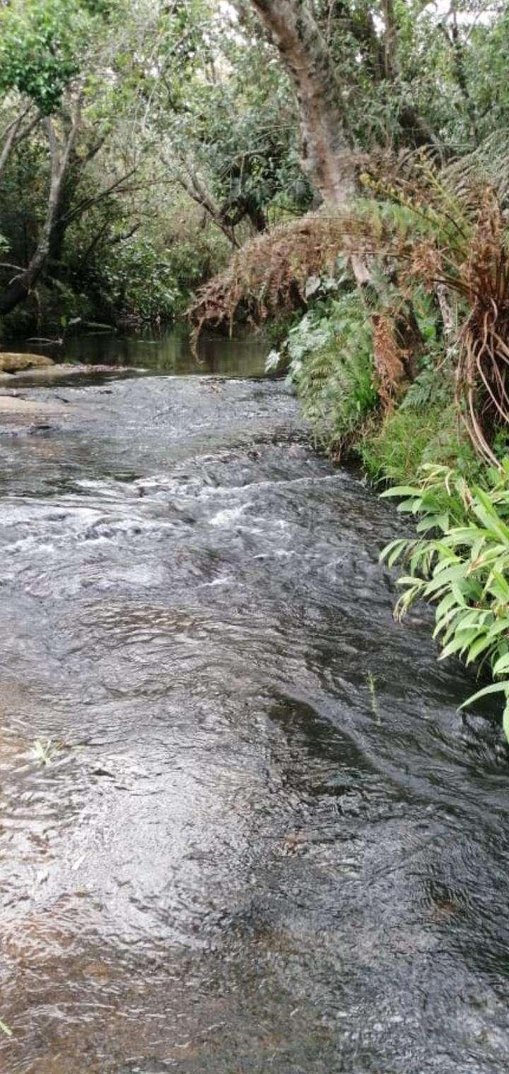 Propiedad con arroyo en Piribebuy zona Chololo - 0
