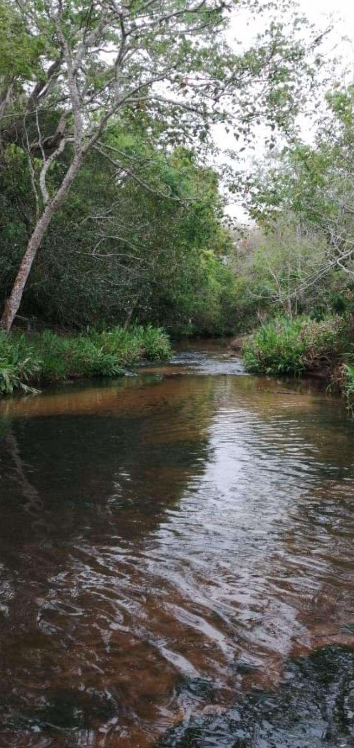 Propiedad con arroyo en Piribebuy zona Chololo - 2