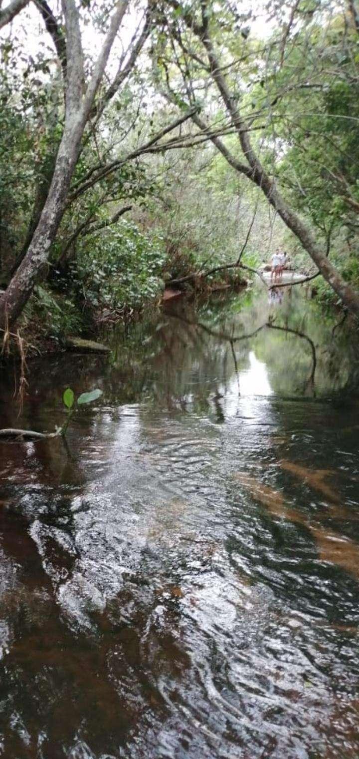 Propiedad con arroyo en Piribebuy zona Chololo - 5