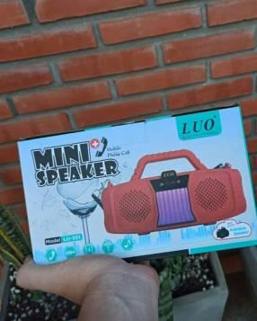 Mini speaker Luo