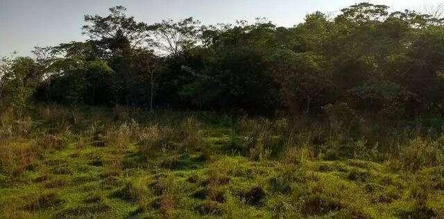 8 hectáreas de campo en San José de los Arroyos COD 3168 - 2