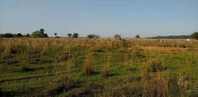 8 hectáreas de campo en San José de los Arroyos COD 3168 - 3