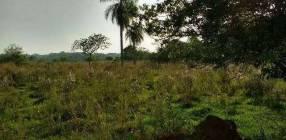 8 hectáreas de campo en San José de los Arroyos COD 3168