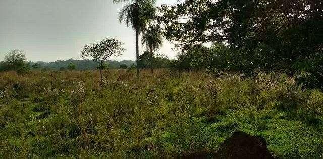 8 hectáreas de campo en San José de los Arroyos COD 3168 - 0