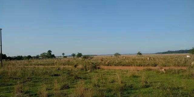 8 hectáreas de campo en San José de los Arroyos COD 3168 - 1