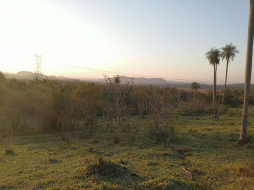 Propiedad de 130 hectáreas en Paraguarí COD 1499 - 6