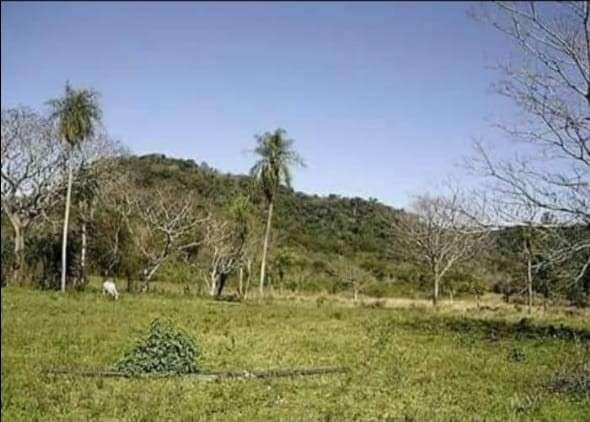Propiedad de 130 hectáreas en Paraguarí COD 1499 - 1