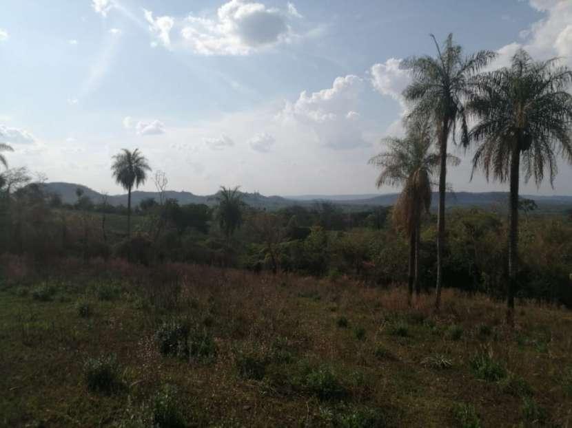 Propiedad de 130 hectáreas en Paraguarí COD 1499 - 4