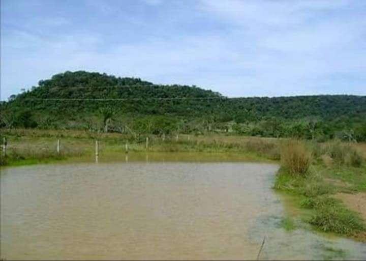 Propiedad de 130 hectáreas en Paraguarí COD 1499 - 0