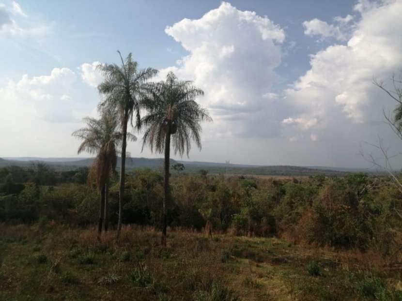 Propiedad de 130 hectáreas en Paraguarí COD 1499 - 5