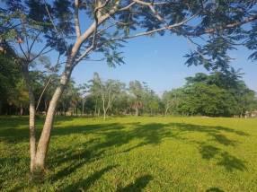 174 hectáreas en Yaguarón COD 1801