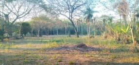 4 hectáreas en Nueva Colombia️ COD 0158