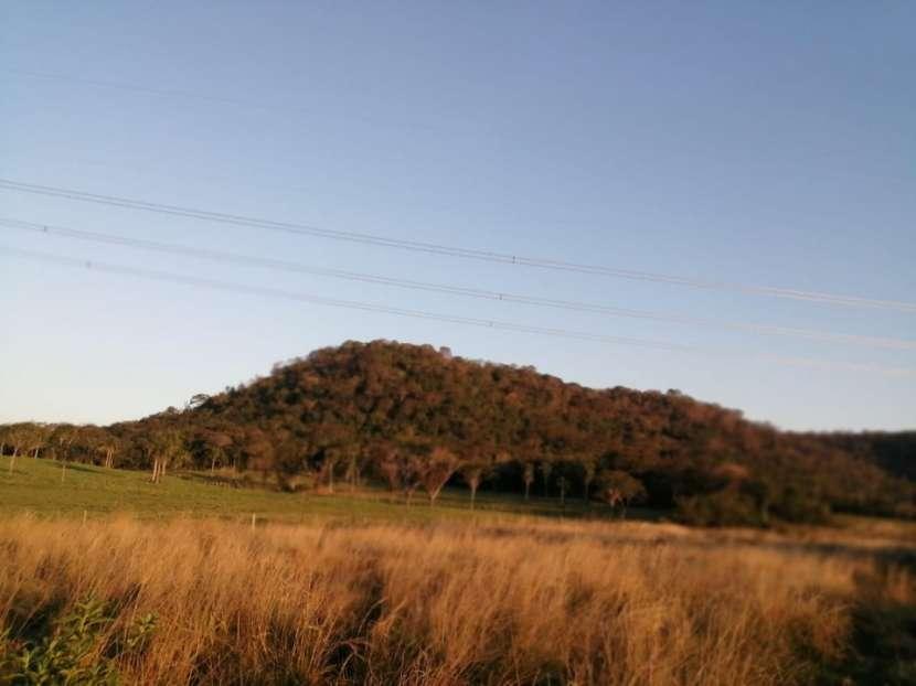 Propiedad de 130 hectáreas en Paraguarí COD 1499 - 3