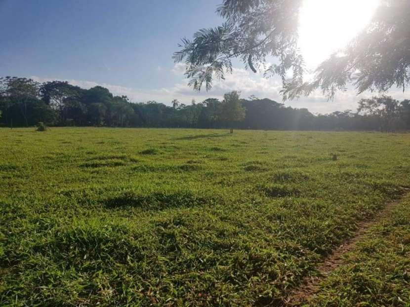 174 hectáreas en Yaguarón COD 1801 - 1
