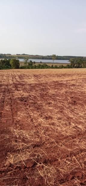 60 hectáreas en Minga Guazú