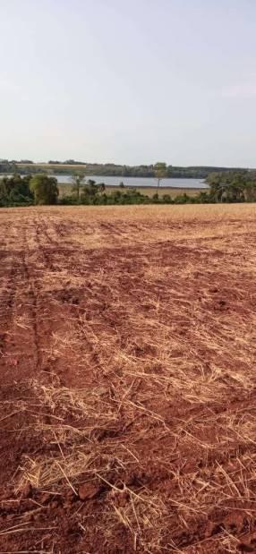 50 hectáreas en Minga Guazú