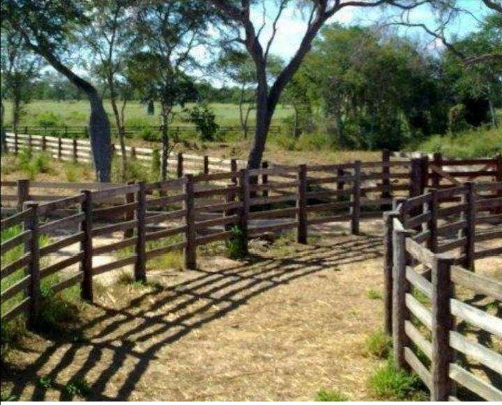 Terreno de 61.923 hectáreas - 3