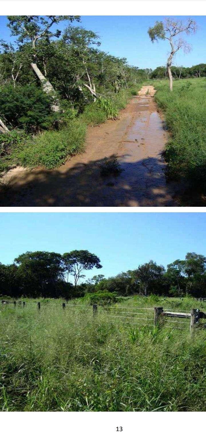 Terreno de 61.923 hectáreas - 5