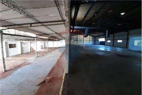 Depósito 4.000 m2 en Luque - 5
