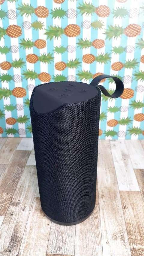 Speaker - 4