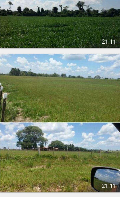 Terreno de 9.019 hectáreas - 2